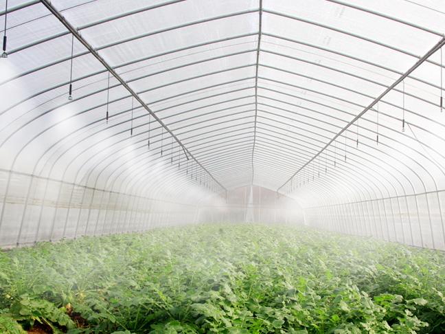 大棚智能灌溉方案